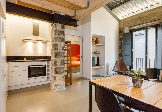 Apartment in Gerona / Girona - Flateli Cort Reial - Groc